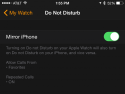 Do-Not-Disturb-Mirroring-250x188.png