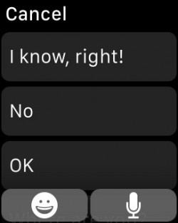 How to send messages on Apple Watch 2