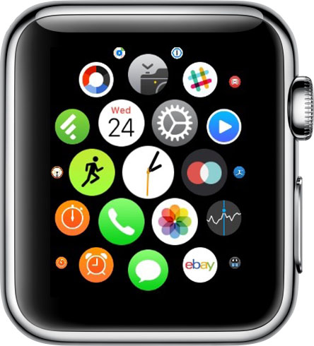 Apple Watch Lock Screen Home Screen on Apple Watch