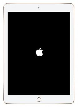 iPad-boot-up