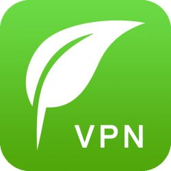 Popular Mobile VPN Services Shut Down in China