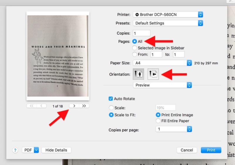 how to make a pdf with multiple pages in preview