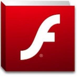 Flash Playrt