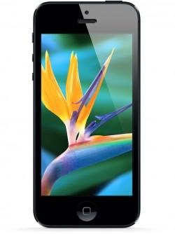 iphone_5_display