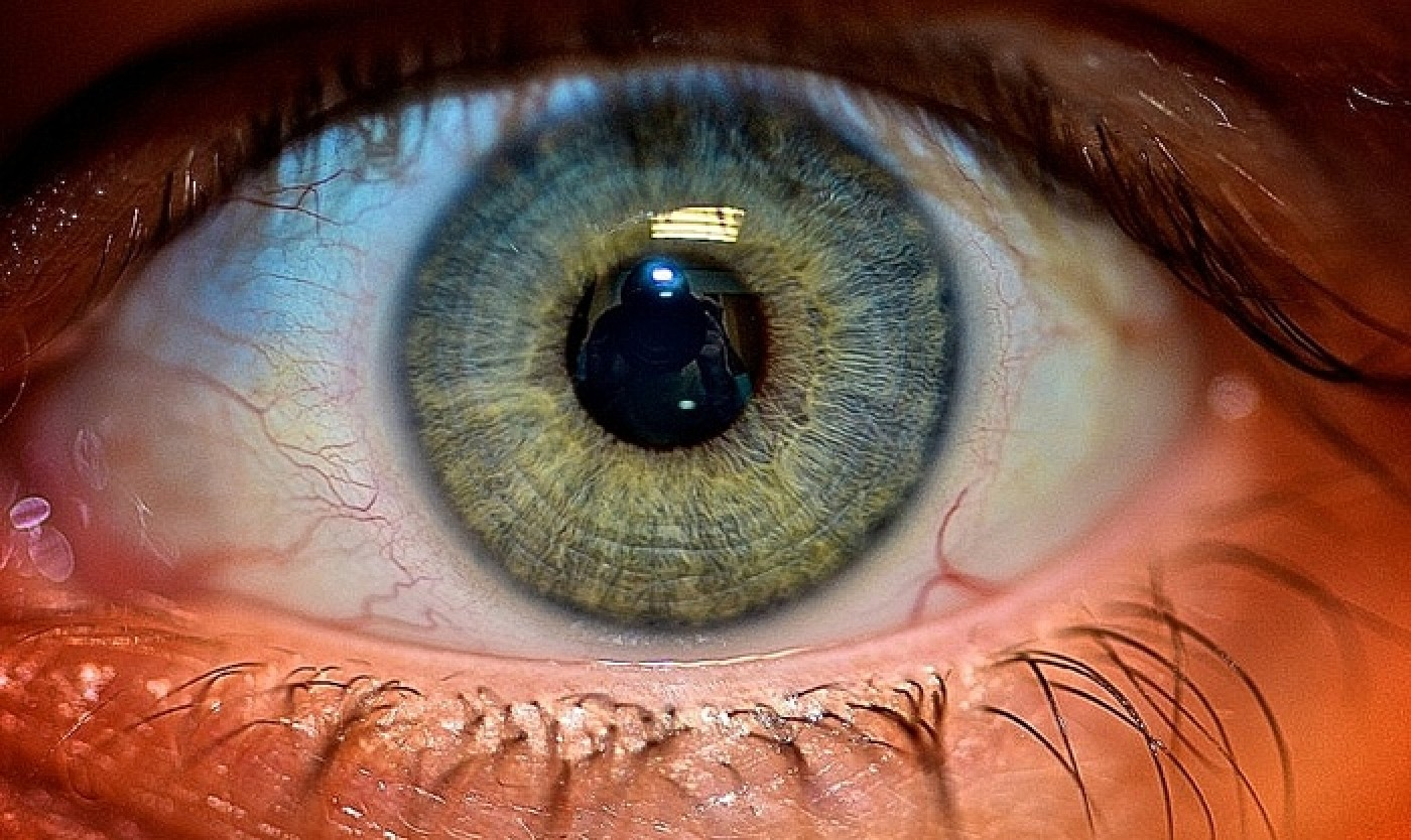 Iris Scanning: The Newest Addition to Apple's Biometric ...