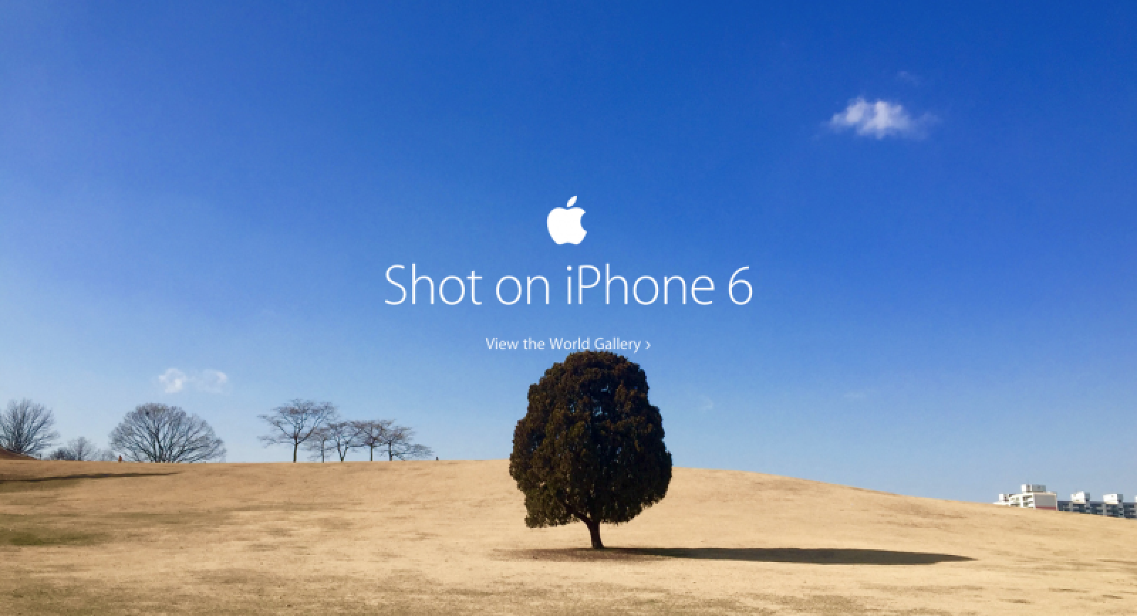 Apple Showcases 'Shot on iPhone 6' World Photo Gallery on ...