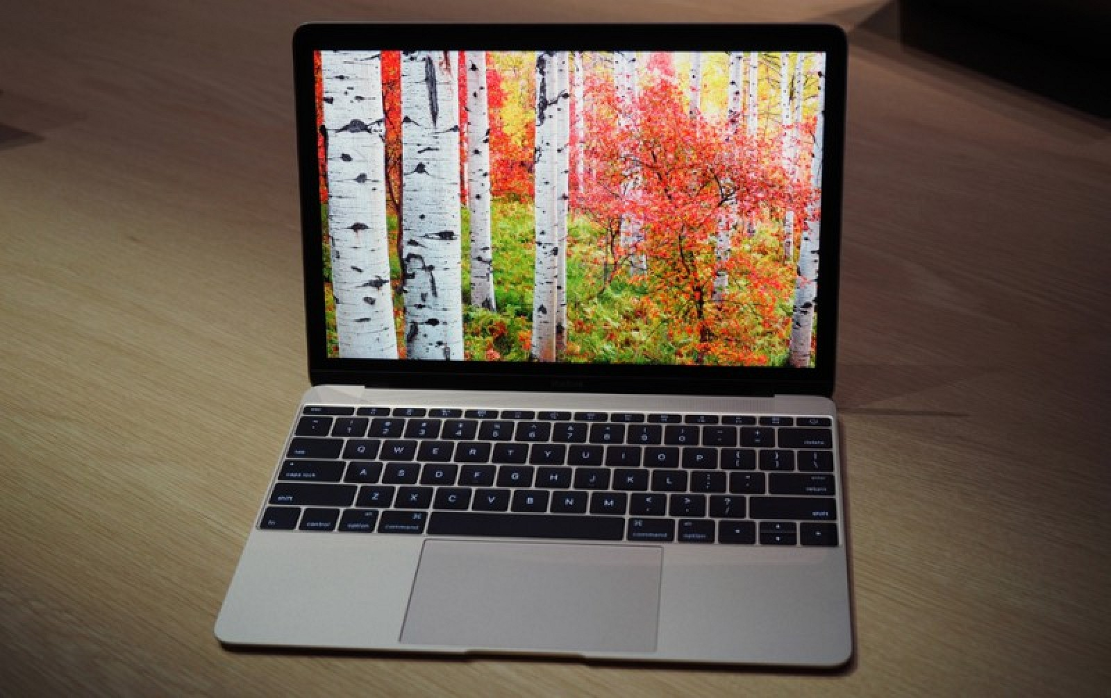 First impressions of new 12 inch macbook ridiculously for New apple book