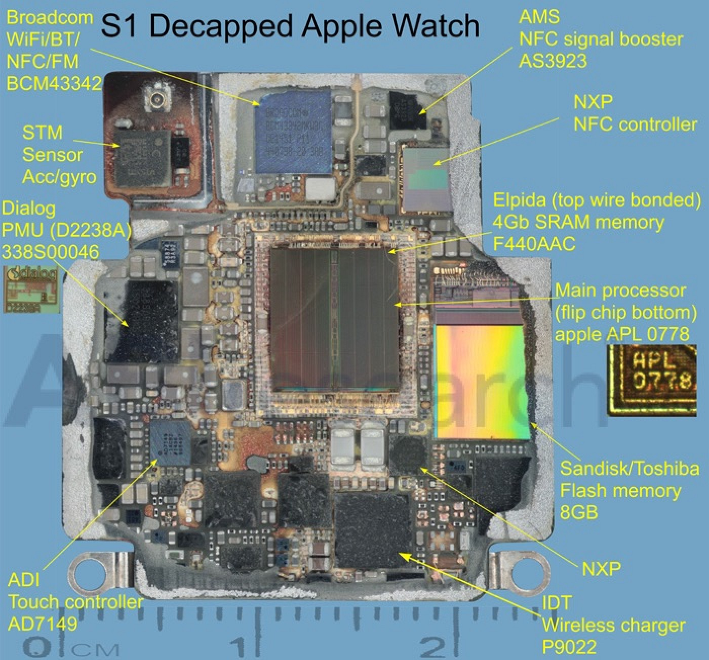 Early Looks Inside Apple Watch U0026 39 S S1 Chip Confirm 512 Mb Ram  Unexpected Suppliers