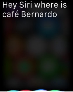 How to use Hey Siri Apple Watch 1