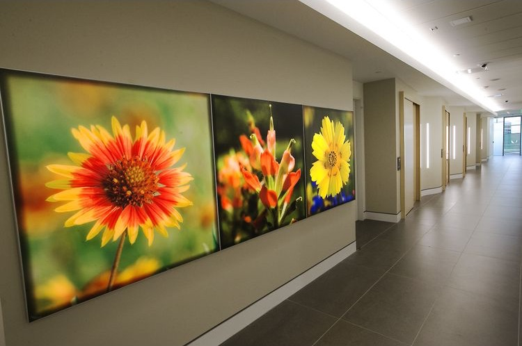 apple_austin_hallway