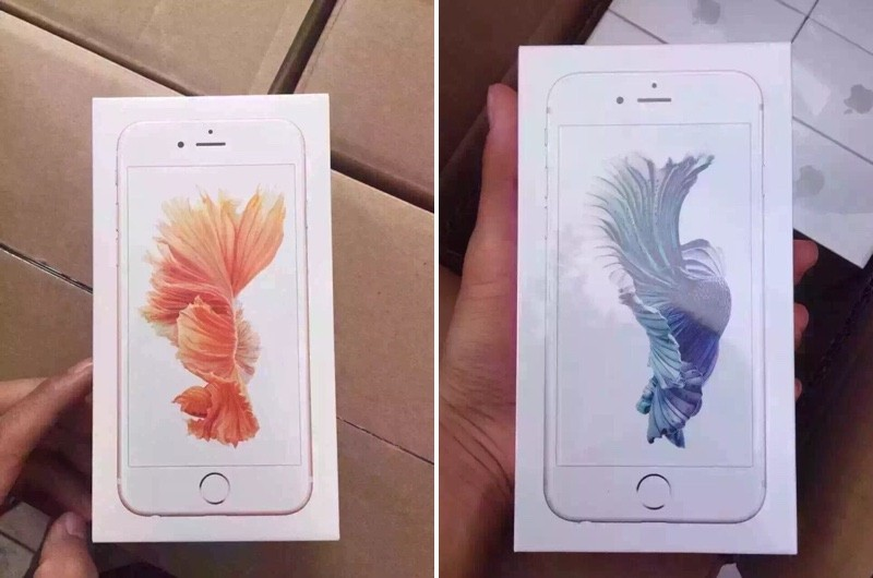iPhone 6s Packaging and Rose Gold iPhone Shown Off in New