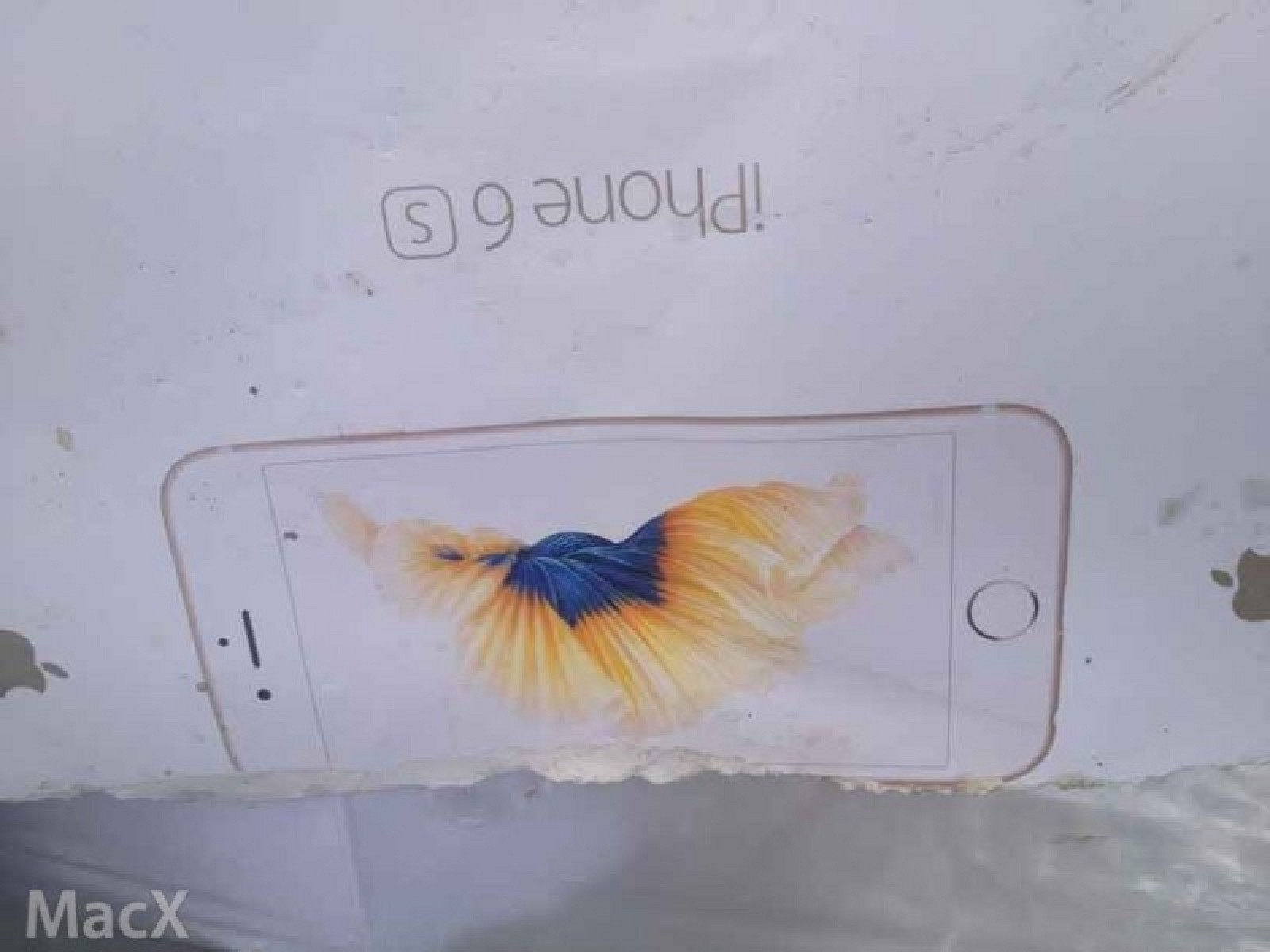 imballaggio 6s iphone