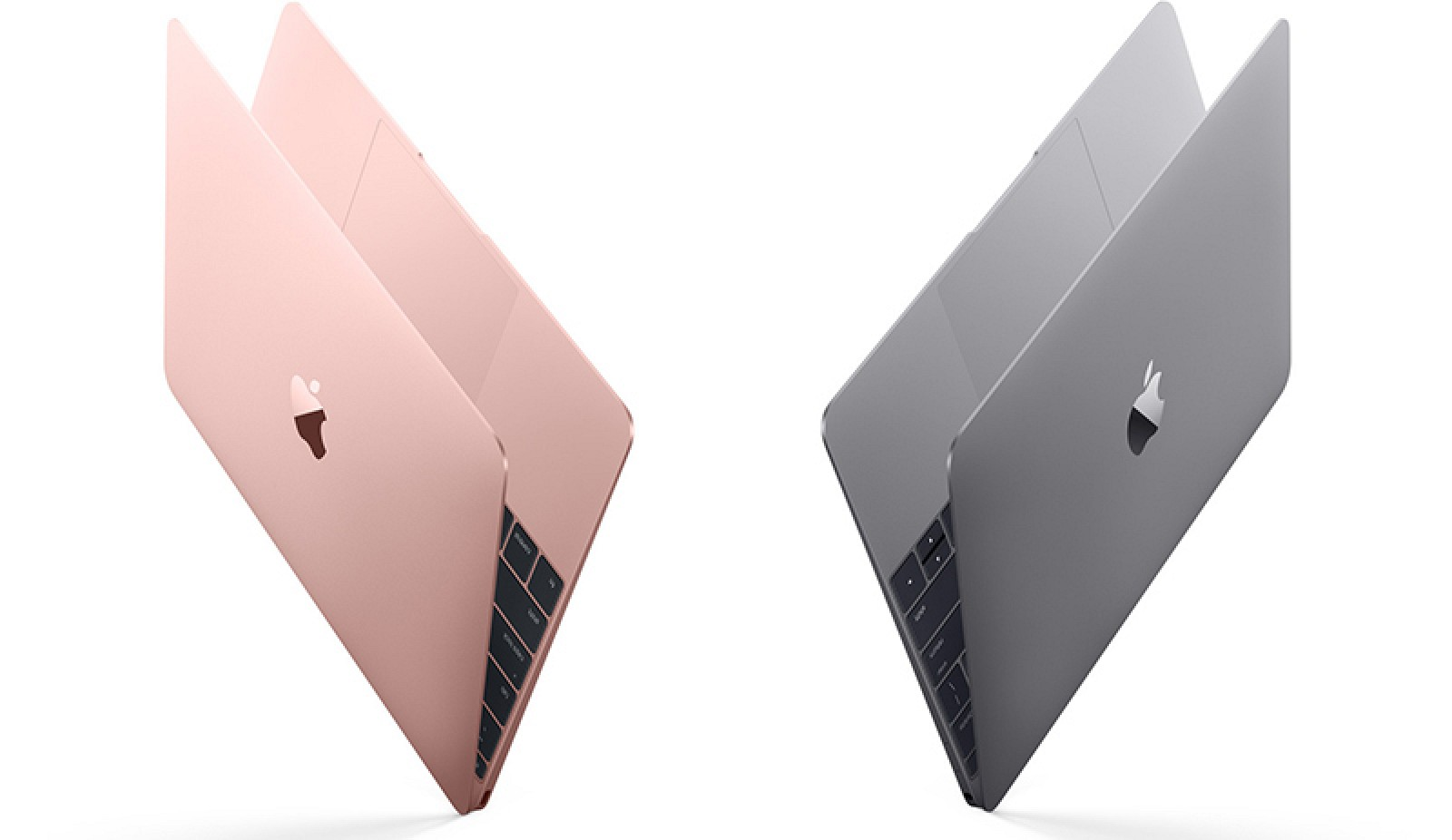 Apple updates 12 inch macbook with skylake processors for New apple book