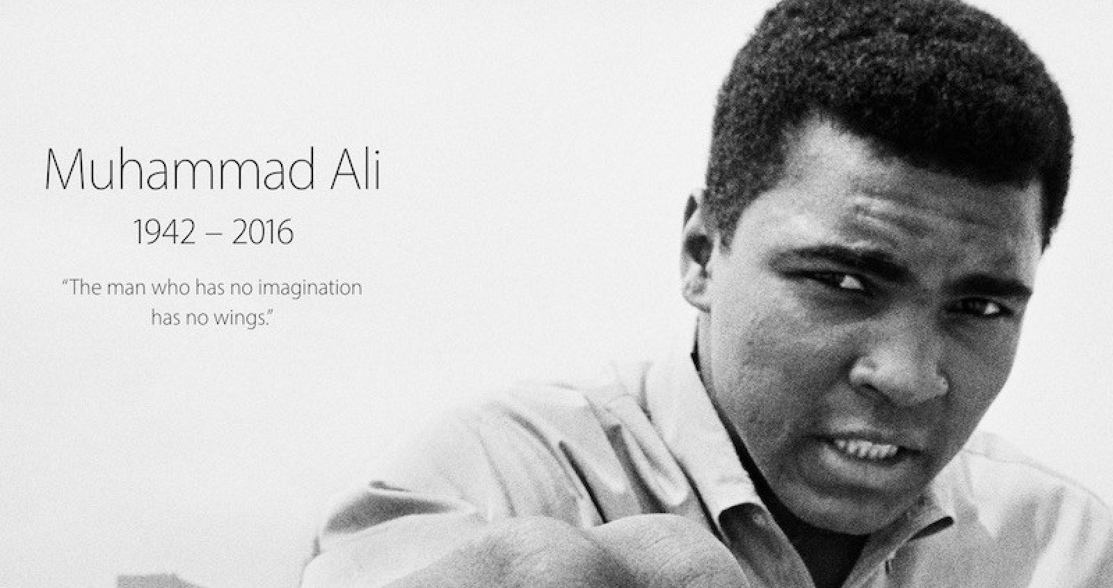"biography of muhammad ali Muhammad biography thursday, january 18, 2007 the life of muhammad the life of muhammad a short summary of ibn ishaq  muhammad called the slave girl and ali ""gave her a violent beating, saying, 'tell the apostle the truth"" she said she knew only good of aisha (495-496."