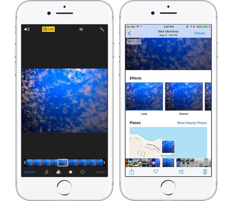 free ipad facetime sex cam