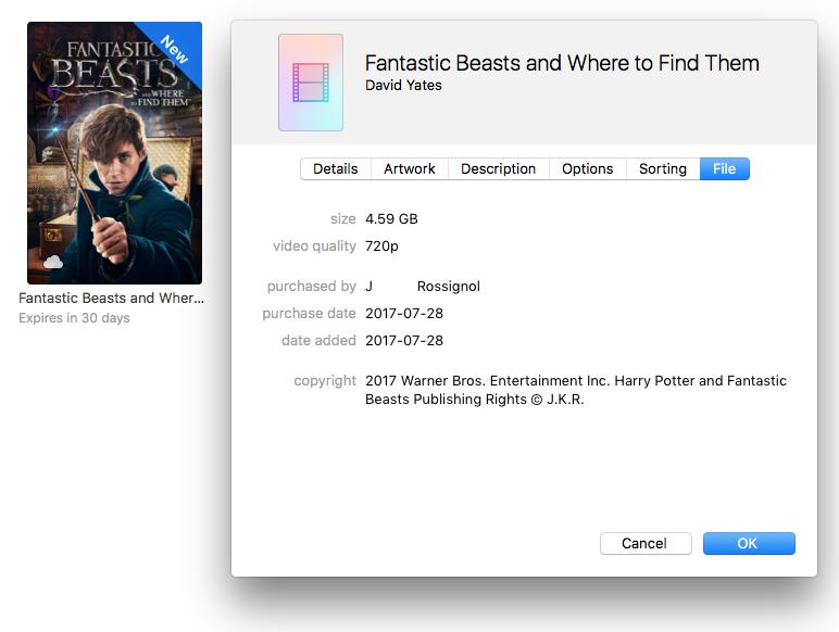 itunes movie rental did not download