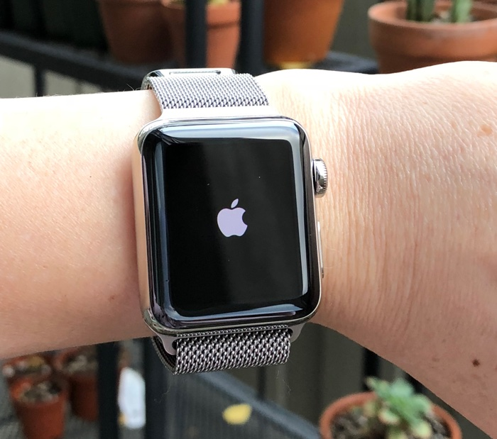 Apple Watch Bug Causing Restarts When Asking Siri About the