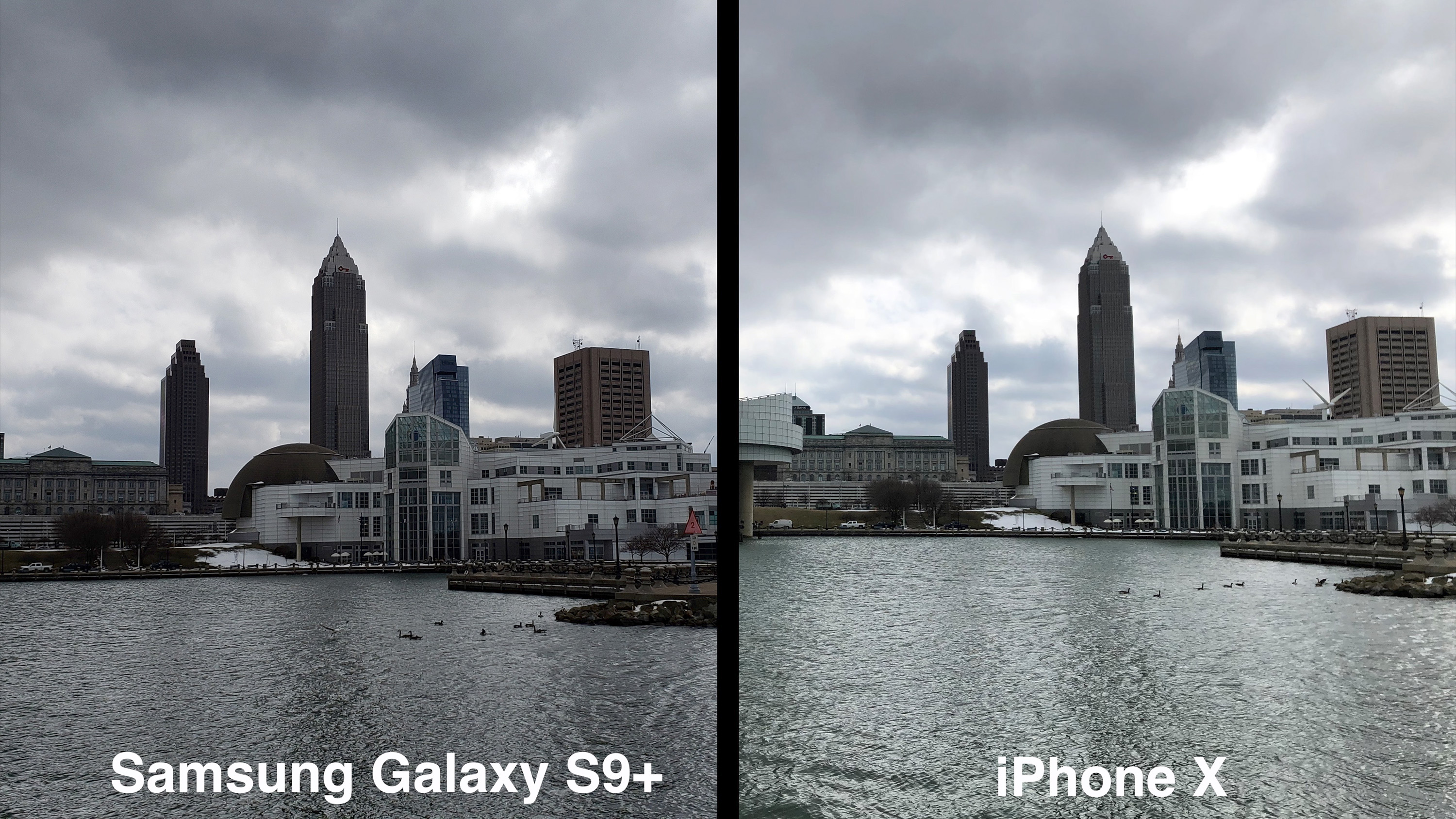 Iphone And Samsung Which Camera Is Better
