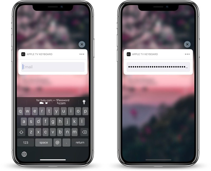 How Apple's iOS 12 Password AutoFill Feature Works With 1Password