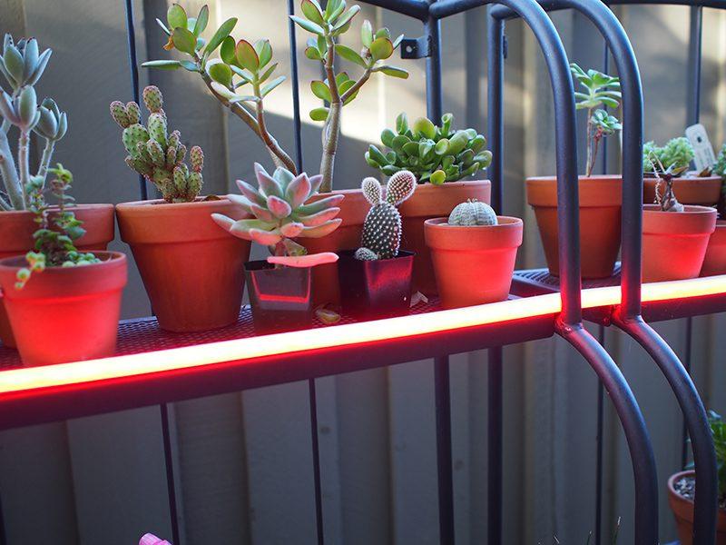 sale retailer d71d7 a7363 Philips Hue Outdoor Lightstrip Review - MacRumors