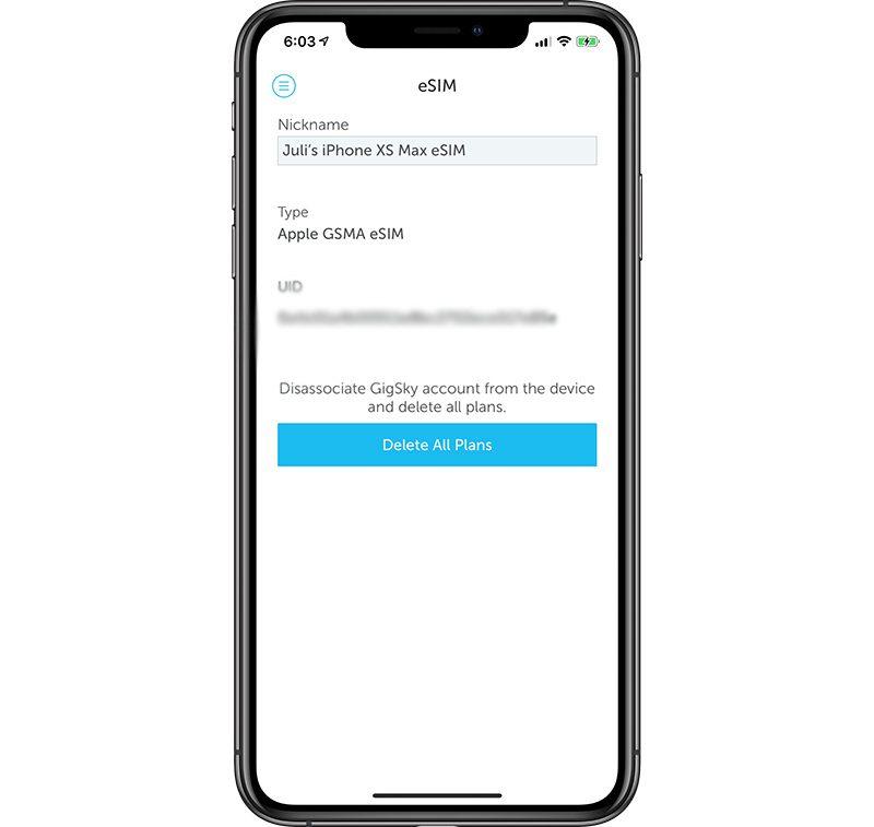 GigSky World Mobile eSIM Data for iPhone Review - MacRumors