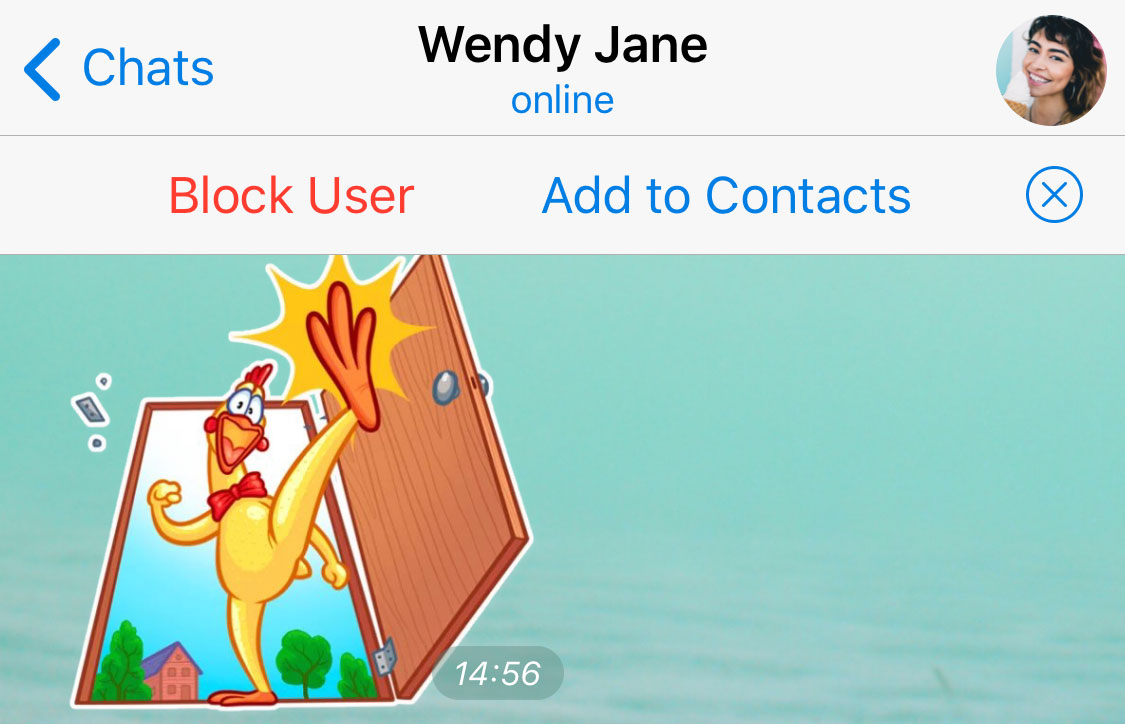 Telegram Update Brings Location-Based Chats, Add People